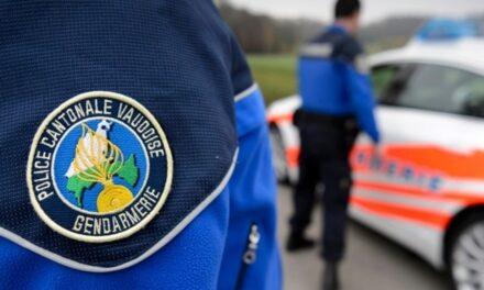 Dois jovens portugueses e um suíço detidos por furtar e vandalizar carros