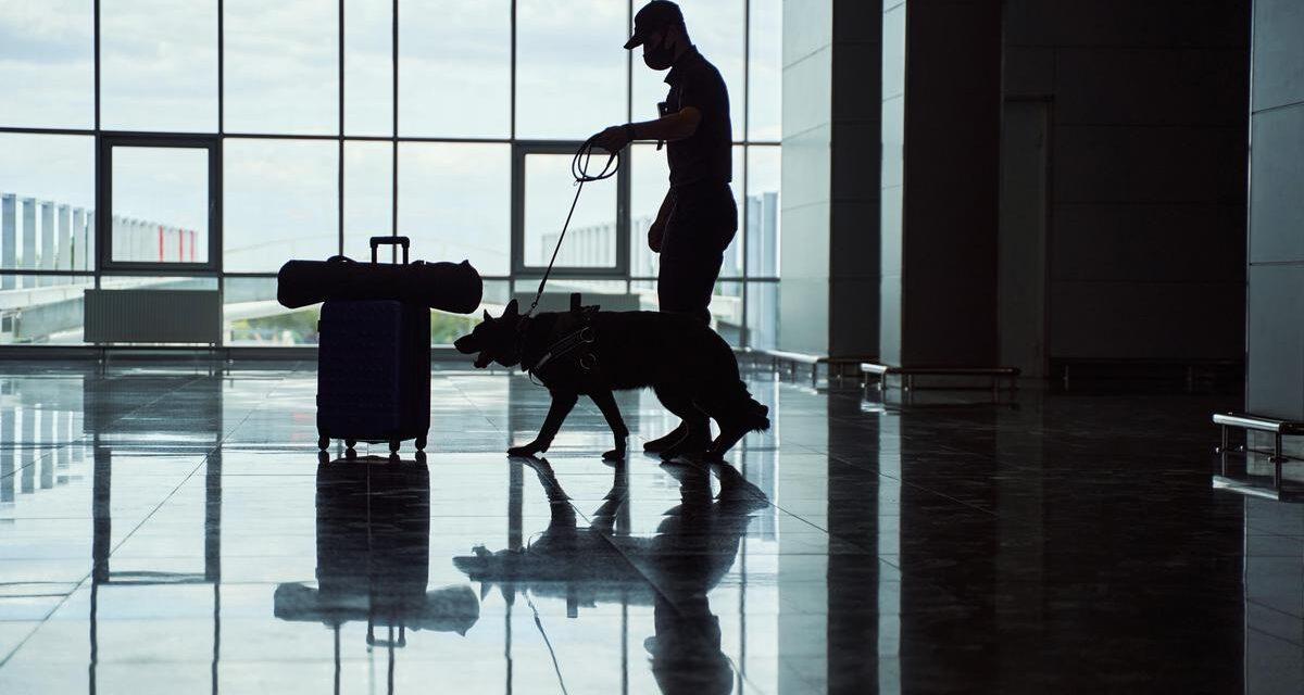 Genebra: Português apanhado no aeroporto com 100 cápsulas de cocaína